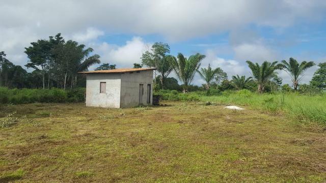 25 hectares documentado por 160 mil reais zap * - Foto 5