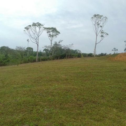 Linda área para Sítio, 10.000 m2 em ótima localização, pronto para construir - Foto 11