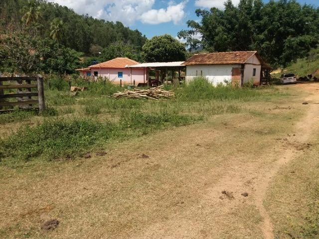 Pocrane Minas Gerais fonte: img.olx.com.br