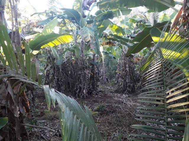 Chácara de terra boa a 9 km de Acorizal - Foto 13