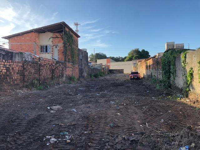 Terreno plano próximo a Forquilha e a avenida Guajajaras - Foto 3
