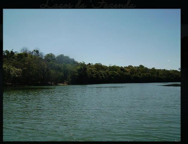 Vendo uma fazenda de 10.257 hectares, em Cocalinho- mt - Foto 4