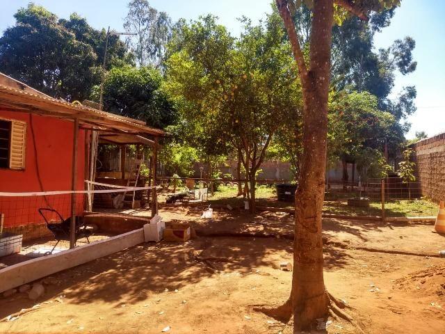 Chácara localizada em Águas Lindas 2000m² - Foto 3