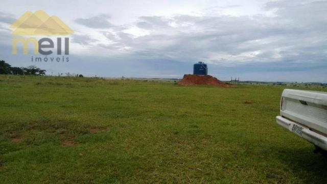 Sítio com 1 dormitório à venda, 96800 m² por R$ 590.000,00 - Zona Rural - Martinópolis/SP - Foto 12