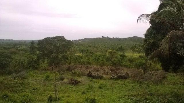 Vendo fazenda em Araçás ba - Foto 3