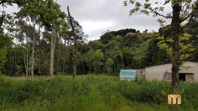 Terreno à venda em Bela vista, Caxias do sul cod:459 - Foto 2