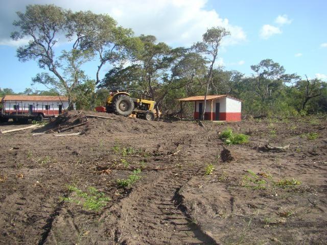 Fazenda com 1.006 hectares, com sede, aberta, para soja e milho - Foto 17