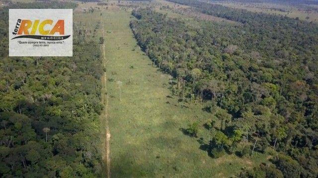 Fazenda a venda, com 129 hectares, no distrito de Triunfo/RO - Foto 13