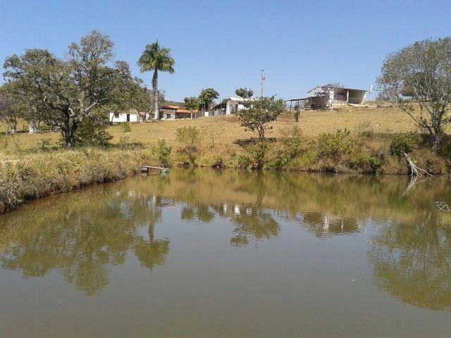 Excelente Fazenda com 138 hectares em Gouveia-MG