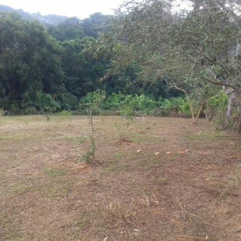 Linda área para Sítio, 10.000 m2 em ótima localização, pronto para construir - Foto 14