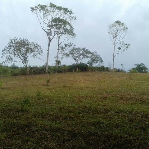 Linda área para Sítio, 10.000 m2 em ótima localização, pronto para construir - Foto 13