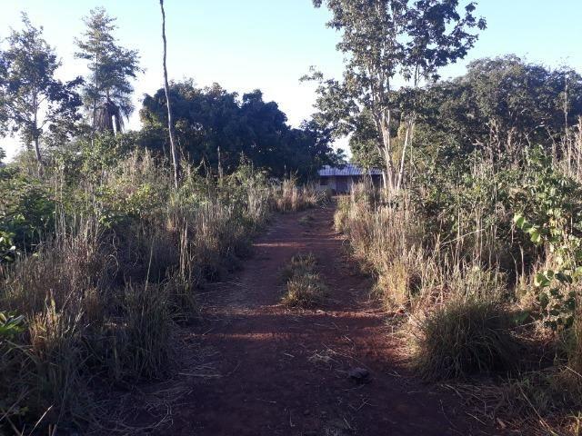 Chácara de terra boa a 9 km de Acorizal - Foto 18