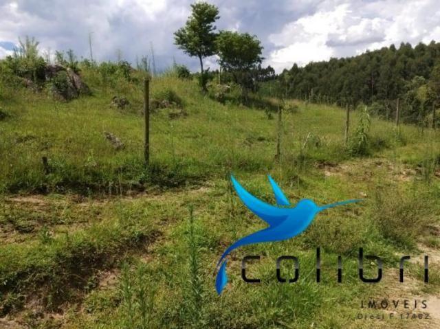 Chácara pronta para criação de gado em mandirituba - Foto 12
