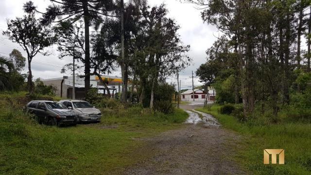Terreno à venda em Bela vista, Caxias do sul cod:459 - Foto 4