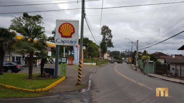 Terreno à venda em Bela vista, Caxias do sul cod:459 - Foto 11