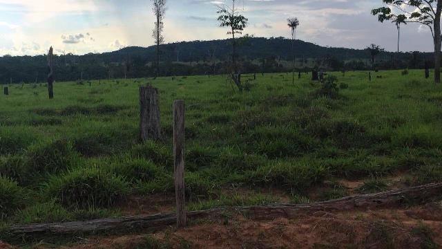 Fazenda 2.904 ha Nova Monte Verde MT - Foto 6