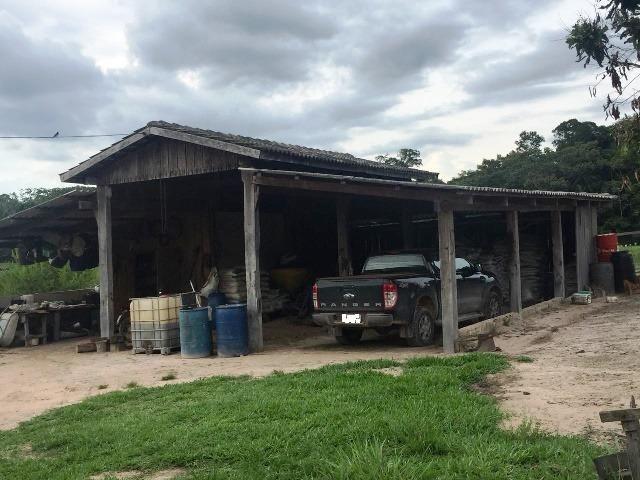 Fazenda 2.904 ha Nova Monte Verde MT - Foto 13