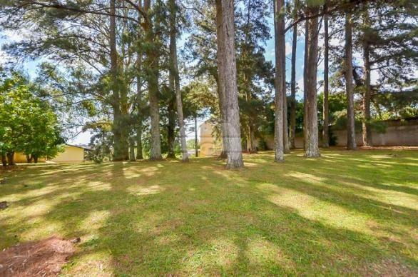 Terreno à venda em Uberaba, Curitiba cod:146250 - Foto 7