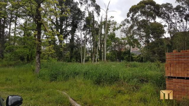 Terreno à venda em Bela vista, Caxias do sul cod:459 - Foto 8