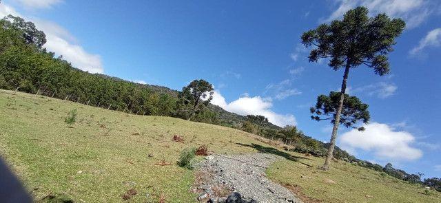 Terreno ( Lote 1.500 M²) - Urubici- SC - Foto 2