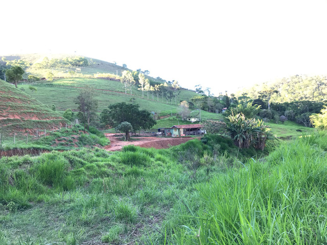 Sitio próximo à Secretario (caminho Sebollas) - Foto 10