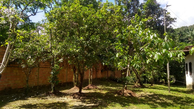 casa na Brasília em Outeiro, Belém/PA. - Foto 18