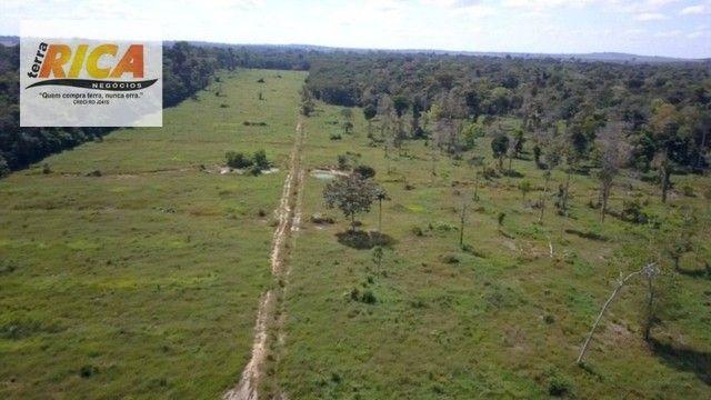 Fazenda a venda, com 129 hectares, no distrito de Triunfo/RO - Foto 17