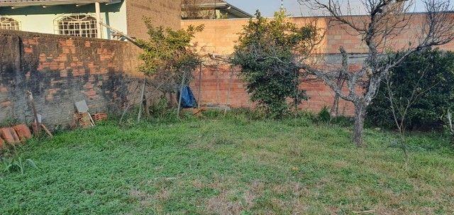 Terreno Urbano Bairro Frei Rogério - Lages/SC - Foto 6