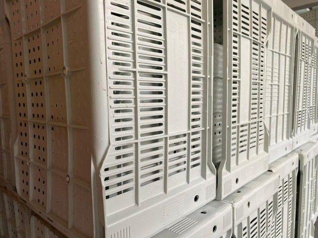 Ja chegou no atacado caixa nova de plastica para verduras - Foto 2
