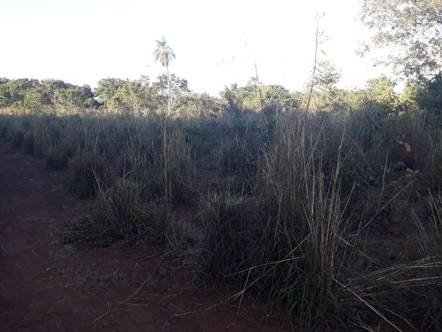 Chácara de terra boa a 9 km de Acorizal - Foto 12