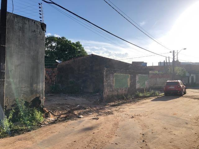Terreno plano próximo a Forquilha e a avenida Guajajaras - Foto 4
