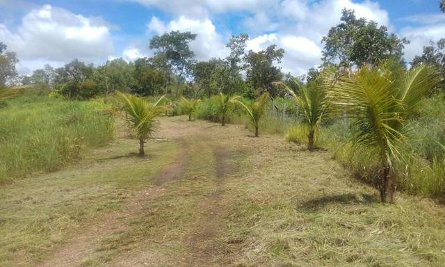 Chacara a venda a 20km de Cuiaba - Foto 3