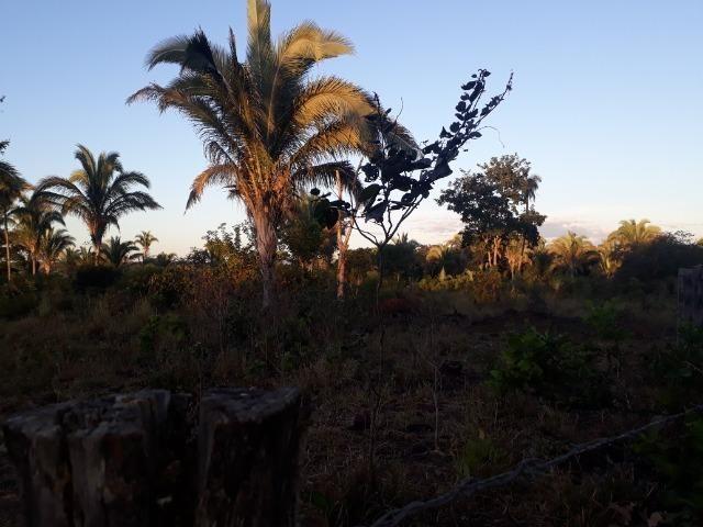 Chácara de terra boa a 9 km de Acorizal - Foto 10