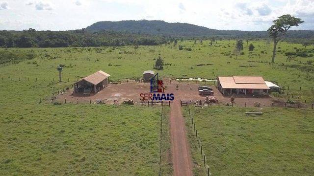 Fazenda à venda, por R$ 7.350.000 - São Miguel do Guaporé/RO - Foto 2
