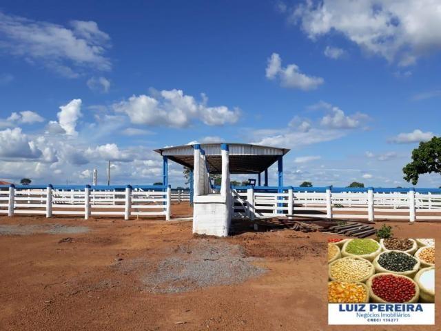 FAZENDA A VENDA DE 292 ALQUEIRÕES EM TALISMÃ - TO (Dupla Aptidão) - Foto 20