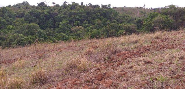 3 alqueires de terra minas gerais - Foto 5