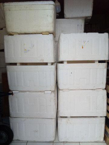 Vendo caixa de isopor 120 L valor 30 reais