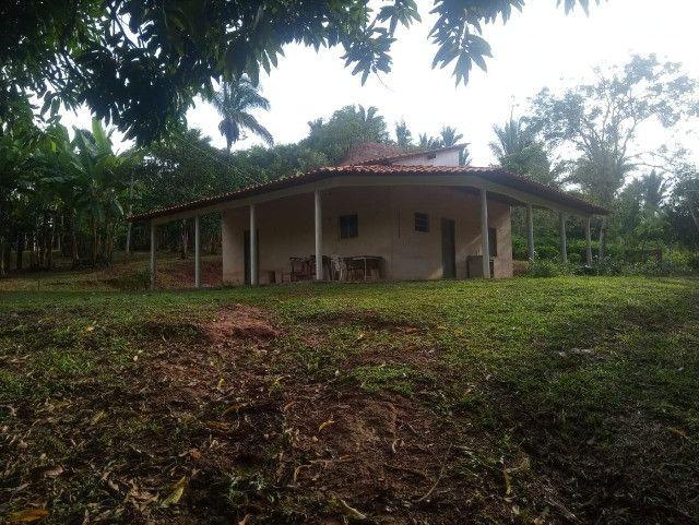 Vende-se sítio com casa, amplo espaço e inúmeras árvores frutíferas.