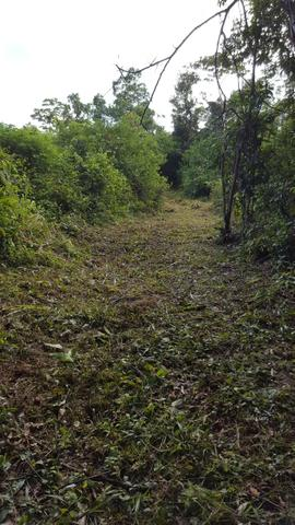 25 hectares documentado por 160 mil reais zap * - Foto 6