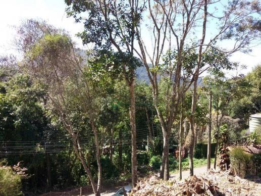 Terreno residencial à venda, Parque do Ingá, Teresópolis. - Foto 6