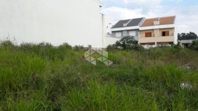 Terreno à venda em Guarujá, Porto alegre cod:TE1432 - Foto 5