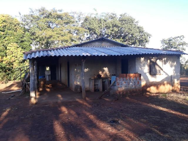 Chácara de terra boa a 9 km de Acorizal - Foto 14
