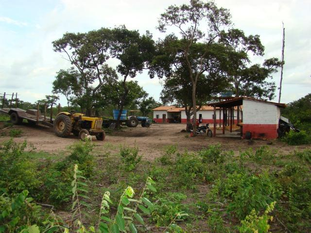 Fazenda com 1.006 hectares, com sede, aberta, para soja e milho - Foto 16