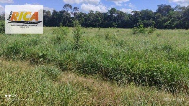 Fazenda a venda, com 129 hectares, no distrito de Triunfo/RO - Foto 18