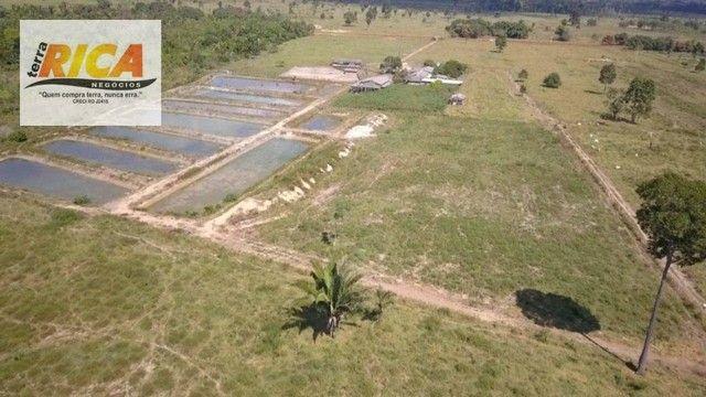 Fazenda a venda, com 129 hectares, no distrito de Triunfo/RO - Foto 6