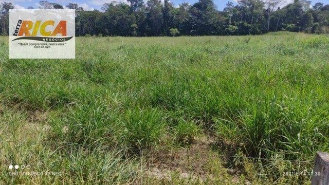 Fazenda a venda, com 129 hectares, no distrito de Triunfo/RO - Foto 15