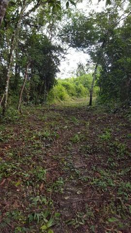 25 hectares documentado por 160 mil reais zap * - Foto 4