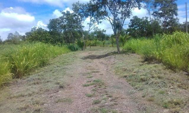 Chacara a venda a 20km de Cuiaba - Foto 6
