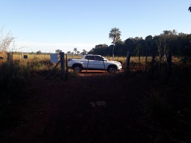Chácara de terra boa a 9 km de Acorizal - Foto 5