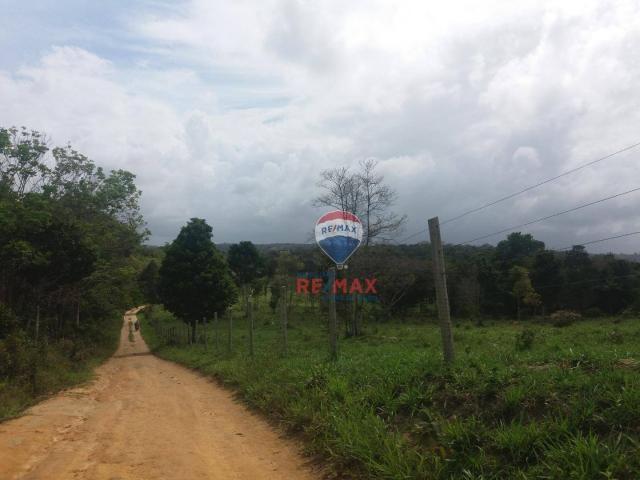 Re/max chave de ouro vende fazendas nas margens do rio buranhém - Foto 5